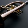All About Jazz user Vivek Patel