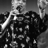 """Read """"Live at 10th Annual East Coast Jazz Festival"""" reviewed by Dave Nathan"""