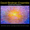 David Bindman Ensemble Sunset Park Polyphony CD release March 1