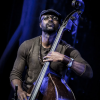Junius Paul, Piero Bittolo Bon, Avishai Cohen & Other New Releases