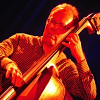 """Read """"From Aimless to Activist, Bassist Kevin Ray Lands on Higher Ground"""" reviewed by"""