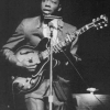 "Read ""Slim Harpo: Blues King Bee of Baton Rouge"""