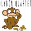 Musician page: Polygon Quartet