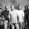 "Read ""The Allman Brothers Band in Concert: Beacon Theatre  2003"""