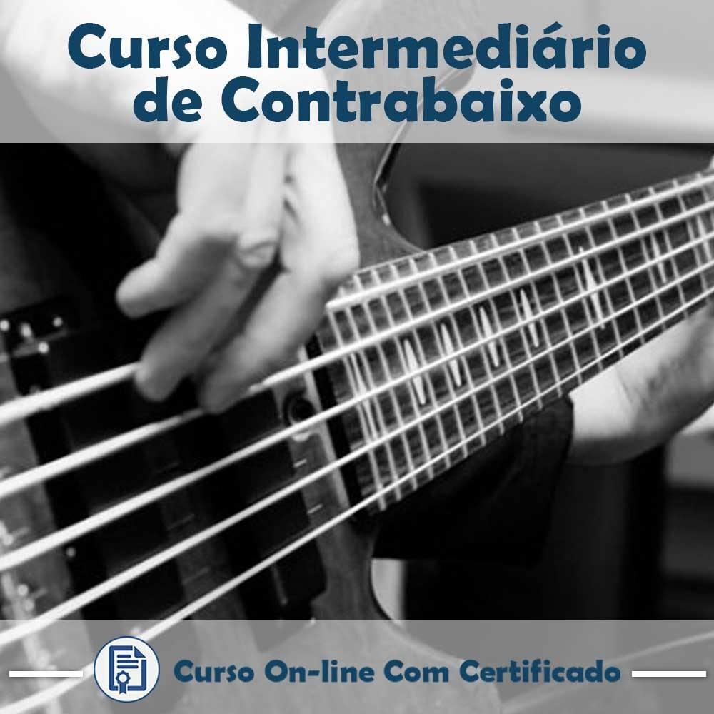 Curso online em videoaula sobre como tocar Contrabaixo - Intermediário com Certificado