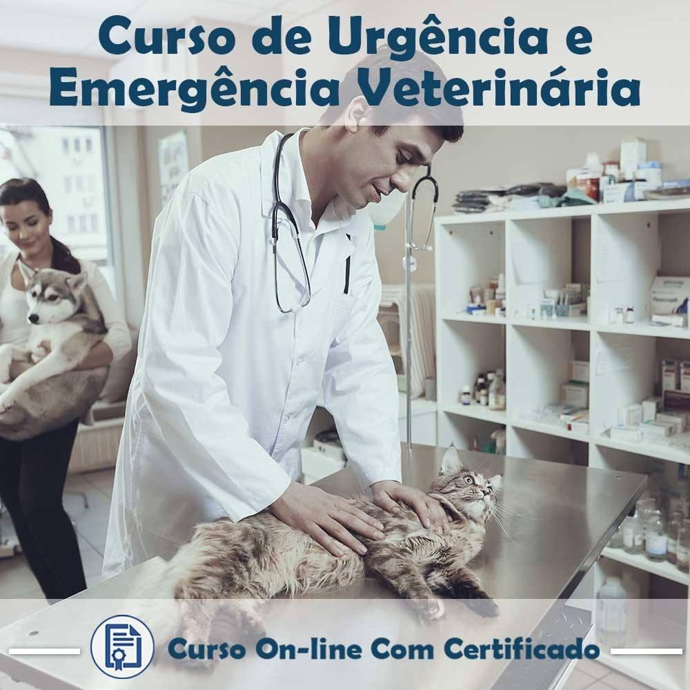 Curso online em videoaula sobre Urgência e Emergência Veterinária com Certificado