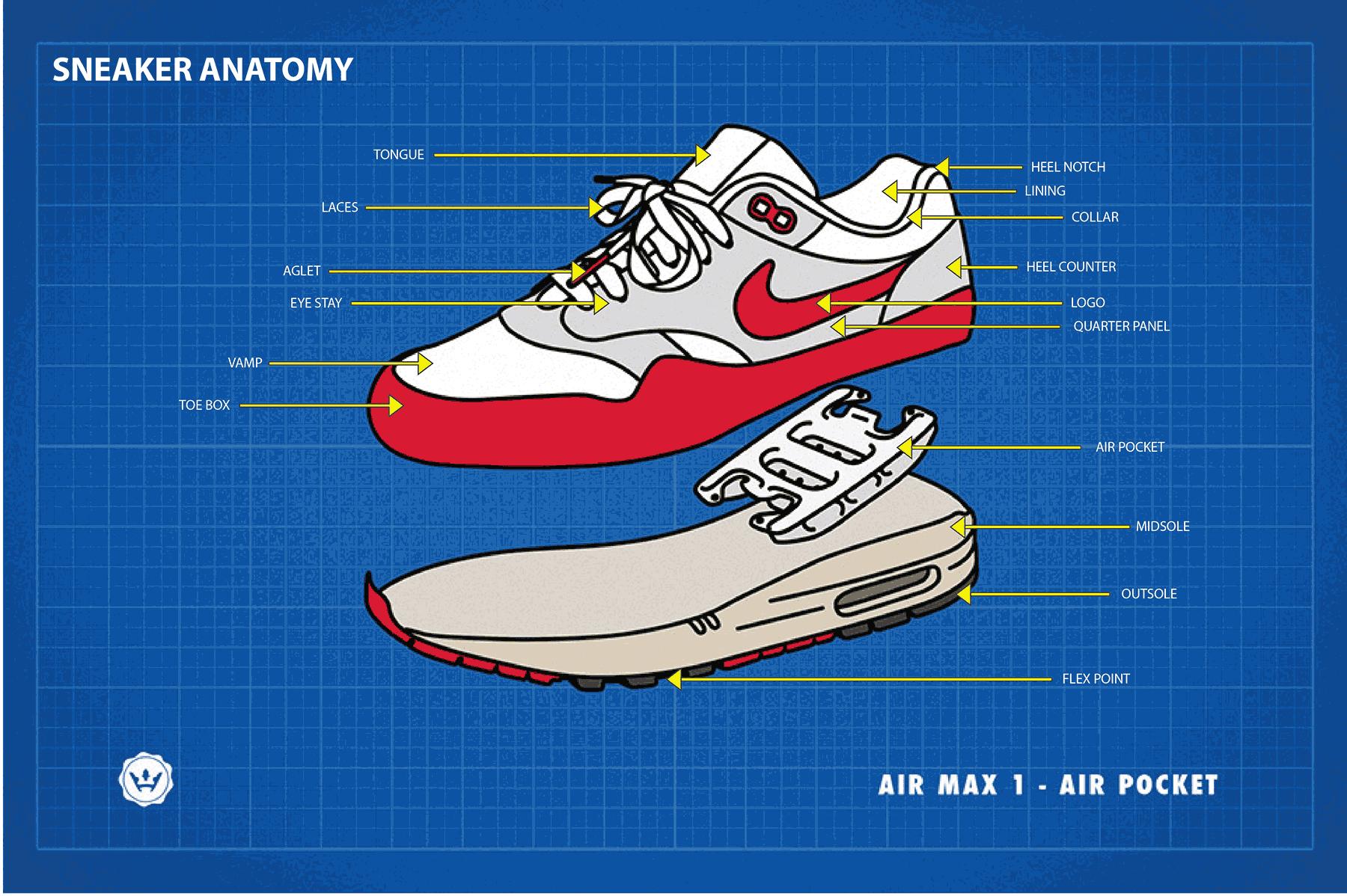 Sneaker Anatomy - FIT Sneaker Essentials