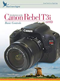 Couple Months With The Canon Rebel t6 (Review)
