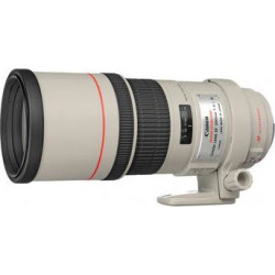 Canon EF 300mm f/4L IS USM Lens 2530A004