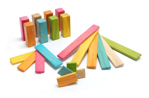 Tegu 22 Piece Endeavor Magnetic Wooden Block Set, Tints