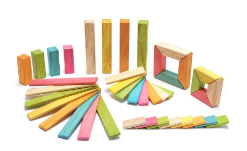 Tegu 40 Piece Explorer Magnetic Wooden Block Set, Tints