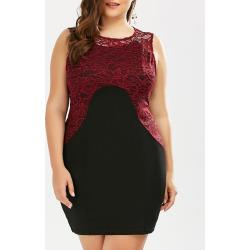 Plus Size Lace Panel Color Block Sheath Dress