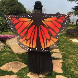 Butterfly Wing Chiffon Pashmina Scarf