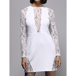 Bodycon Long Sleeve Round Neck Lace Spliced Dress