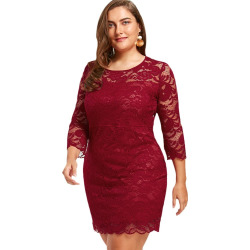 Women'S Sheath Dress 3/4 Sleeves Lace Hollow Out Sexy Plus Size Dress