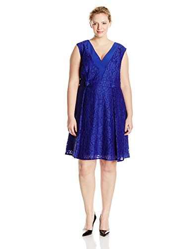 Adrianna Papell Women's Plus-Size A-Line Extended Shoulder Lace V Neck Dress, Iris, 16W