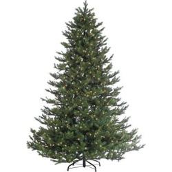 75ft pre lit artificial christmas tree rockford pine clear lights - 7.5ft Pre-Lit Artificial Christmas Tree Rockford Pine - Clear Lights, Multi-Colored