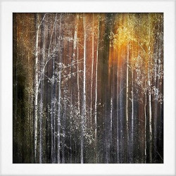 artcom nothing gold can stay by ursula abresch framed photographic print - Art.com Nothing Gold Can Stay by Ursula Abresch - Framed Photographic Print, Soho White