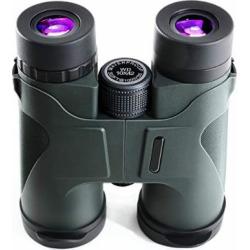 8×32 Binoculars for Adults Metal Body Ultra HD Professional Binoculars for Bird Watching Travel Stargazing Hunting Concerts Sports Prism FMC Lens