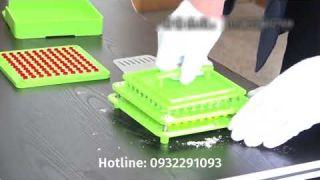 Cách sử dụng khuôn vô nang nhựa 100 viên giá rẻ