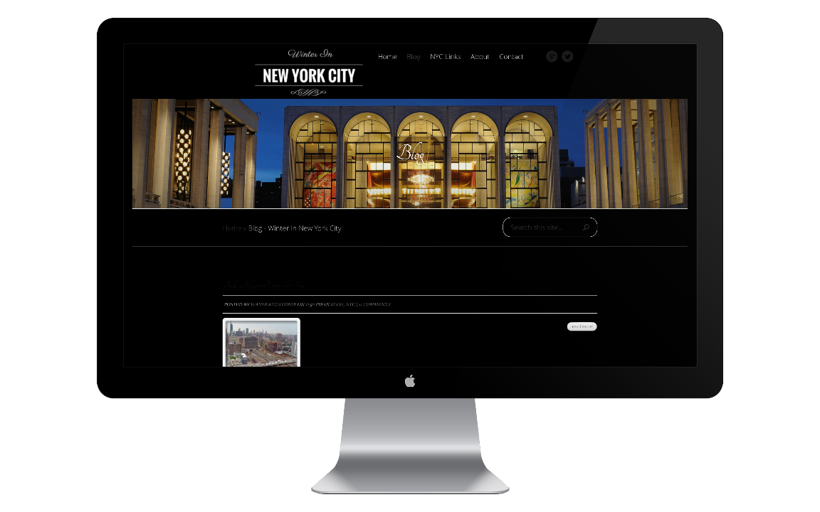 Winter In New York City Website Design