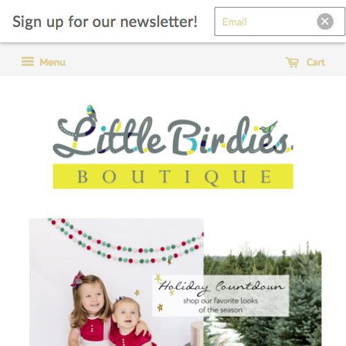 Little Birdies Boutique