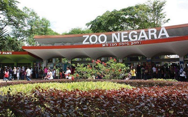 حديقة حيوانات ماليزيا