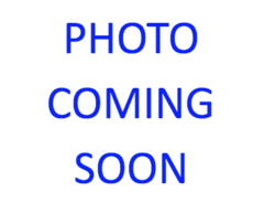 Wheel Motors > 1 HP MOTOR (115V DC with Flag Conn)