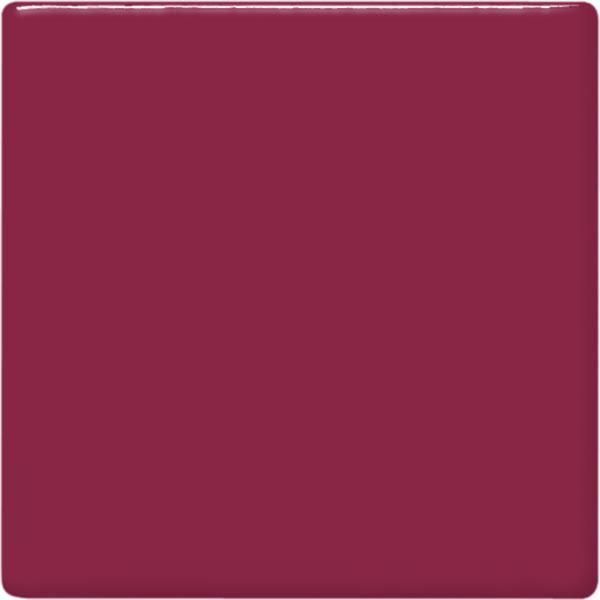 Tp52 raspberry square 2048px