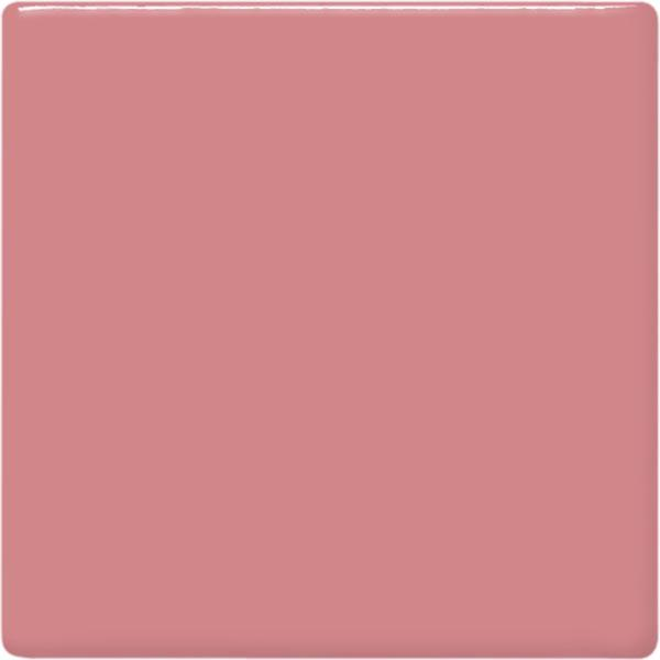 Tp53 pig pink square 2048px