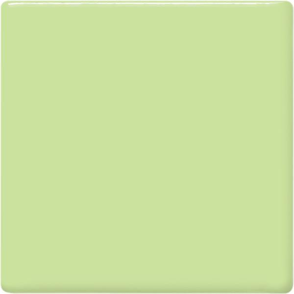 Tp40 mint green square 2048px