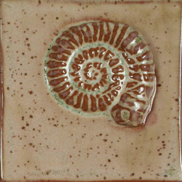 Lt 161 fossil tile red clay