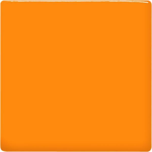 Tp65 pumpkin square 2048px