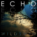 Popular Plugging - Wild Swim - 'Echo'