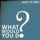 SEED TO TREE - What Would You Do?