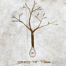 SEED TO TREE - Broken Down (Single)