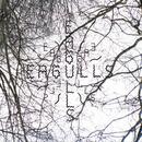 Dan McEvoy - Eagulls - Nerve Endings