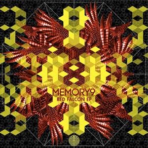 Memory 9
