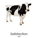Mahl  - Satisfaction