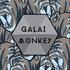 Galai - Galai - Monkey