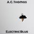 A.C. Thomas - Stray Cat