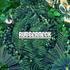 Rubberneck - Flow