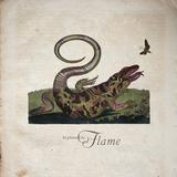 Sephine Llo - Home (Radio Edit)