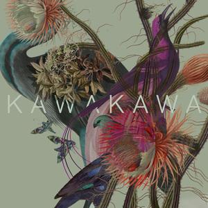 Kawakawa