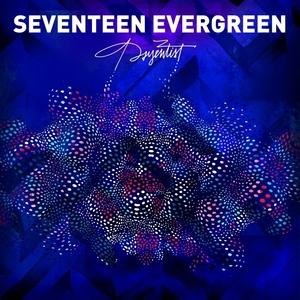 Seventeen Evergreen