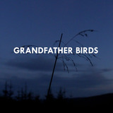 Grandfather Birds