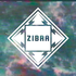 ZIBRA - Chlorine (radio edit)
