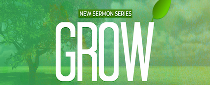 Amazing   grow youversion