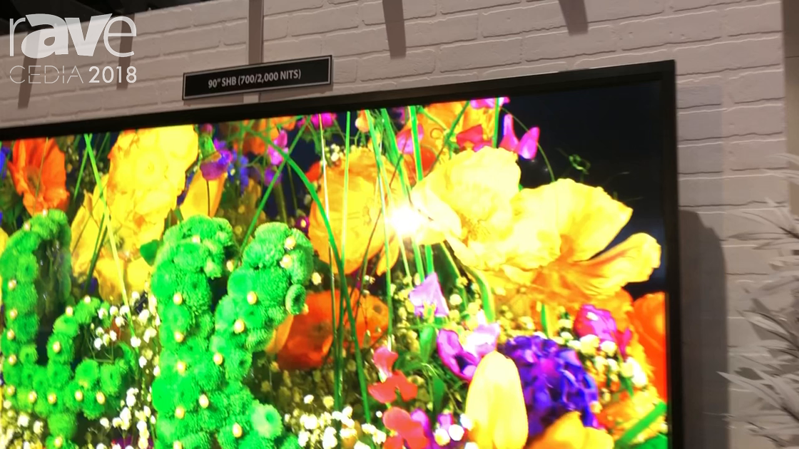 CEDIA 2018: Mirage Vision Introduces 90″ SMB Outdoor TV