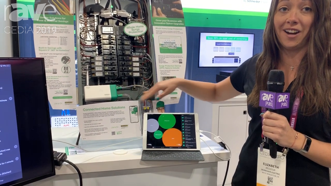CEDIA 2019: Square D Presents Wiser Energy Smart Home Energy Monitoring System